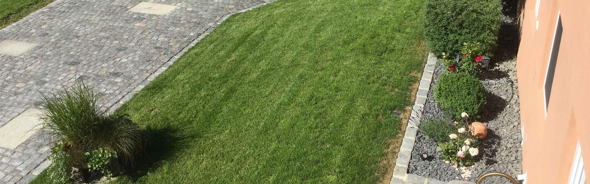 Gemähter Rasen